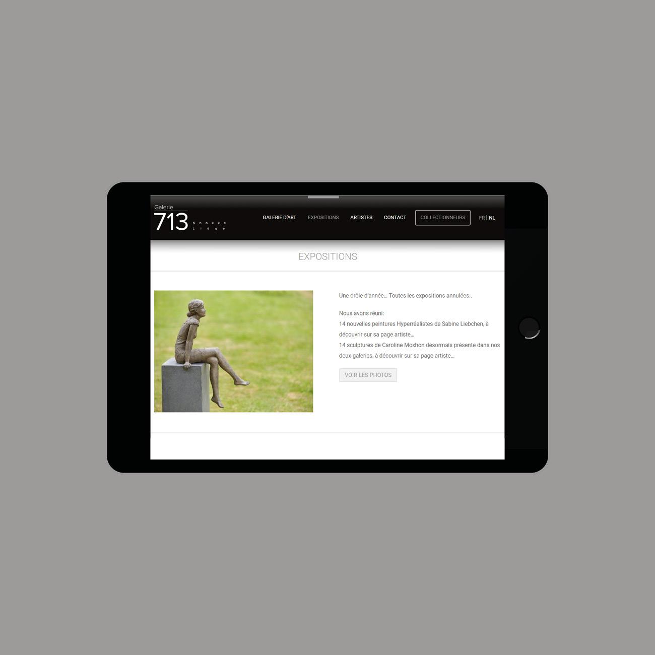 Miko Digital Agence web à Liège - Site internet de La Galerie 713