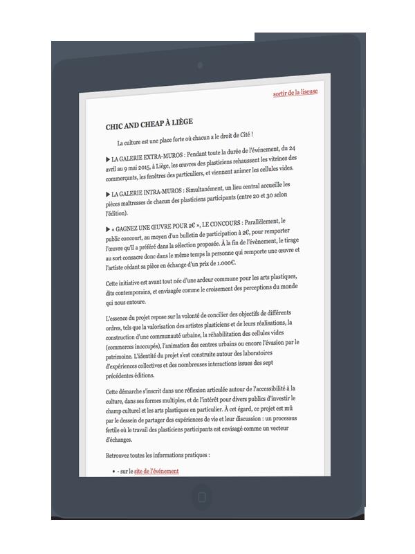 developpement wordpress-sur-mesure agence web Wallonie
