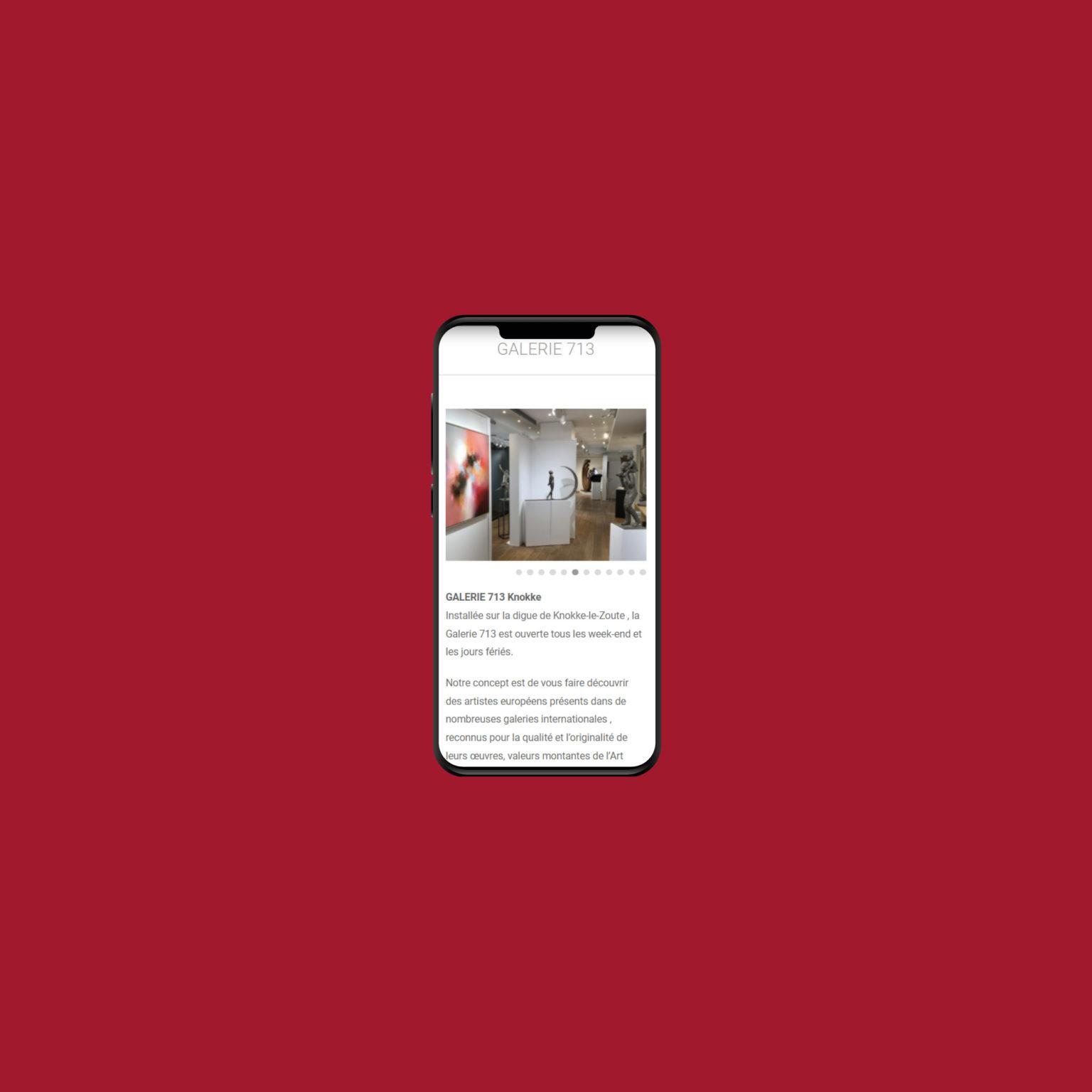 Miko Digital Agence web à Liège - Galerie 713