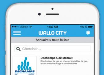 Création site web Liège Mobile Wallo City
