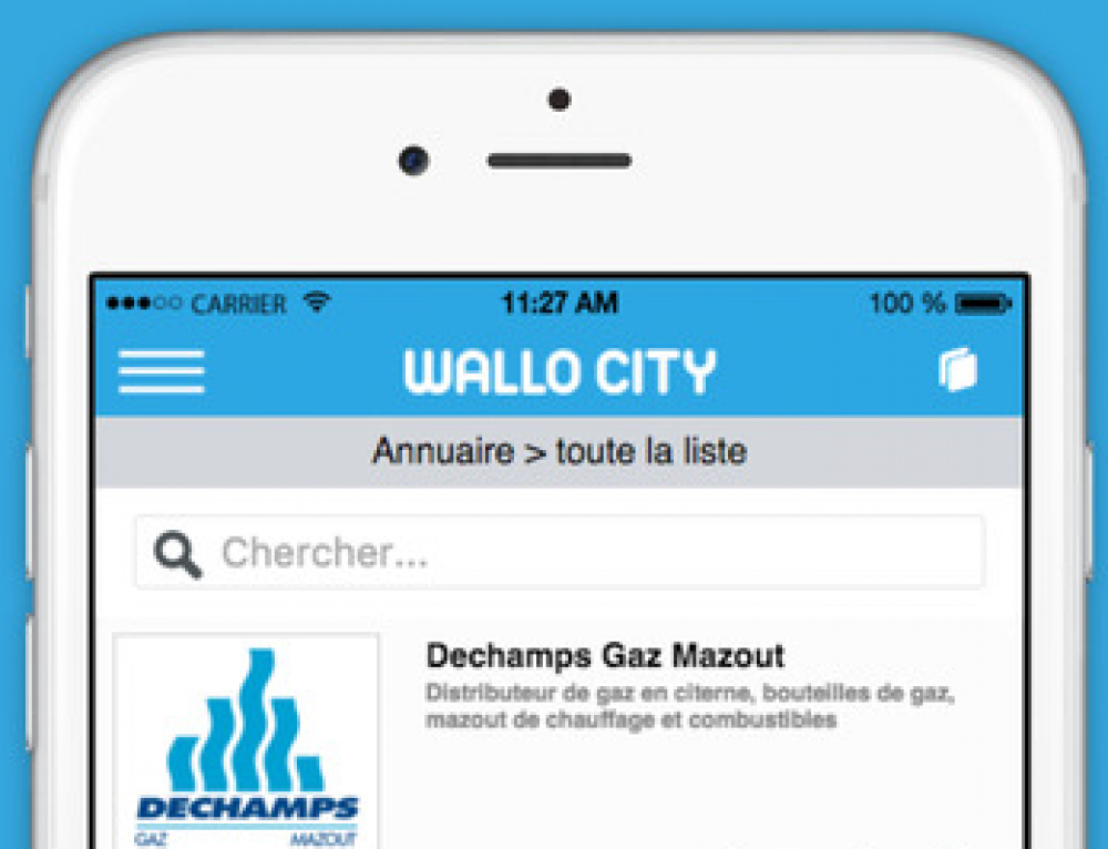 Création App Mobile Wallocity
