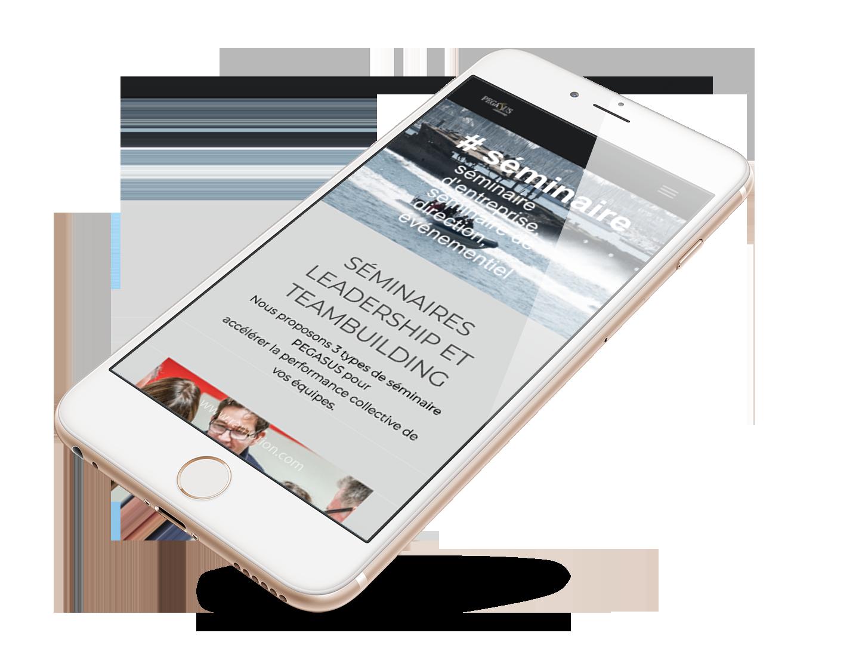 Création site web mobile Pegasus Leadership