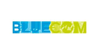 Création site web logotype Bluecom