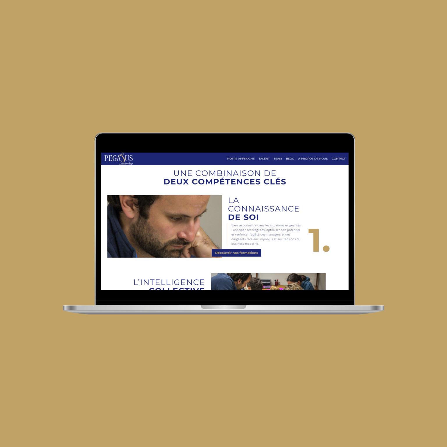 Miko Digital Agence Web à Liège - Pegasus