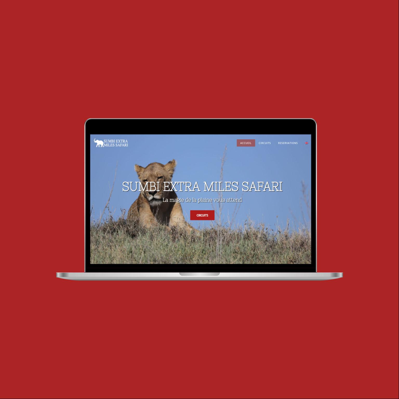 Miko Digital Agence web à Liège - Tanzanie