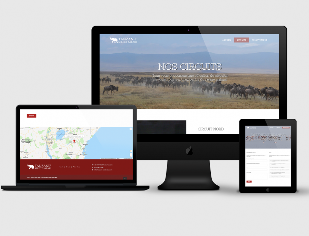 Création site web Tanzanie Select Safari