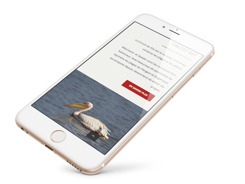 Création site web iphone Tanzanie Select Safari